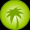 palmeras2